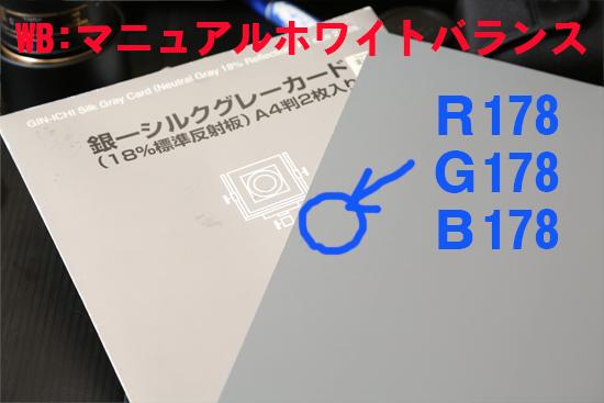 2013_1202_04.jpg