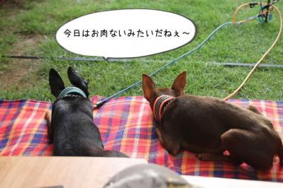 2013_07_14_9999_131.jpg