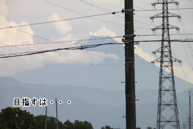 2013_07_14_9999_76.jpg