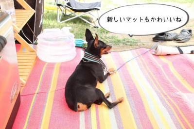 2013_07_26_9999_33.jpg