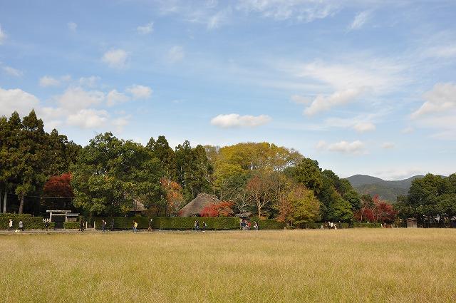 DSC_0043落柿舎