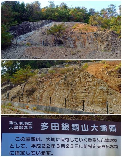 141118多田銀銅山大露頭