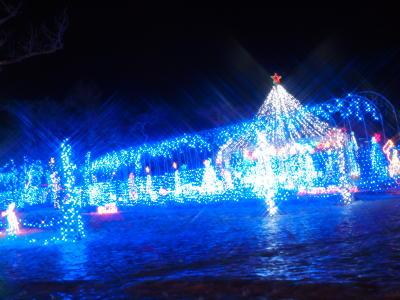 榛名湖イルミ 3
