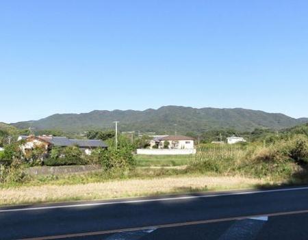 センブリと小岱山 168