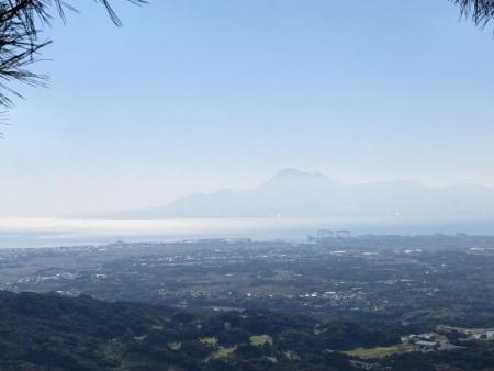 センブリと小岱山 143