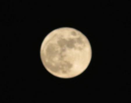 十五夜満月 ナメラ 140