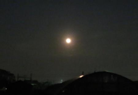 十五夜満月 ナメラ 145