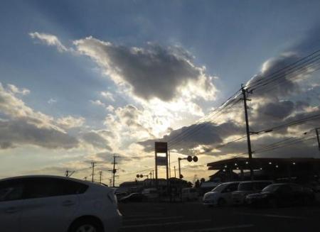夕陽と鳥 018