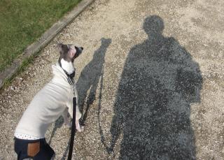散歩中の影