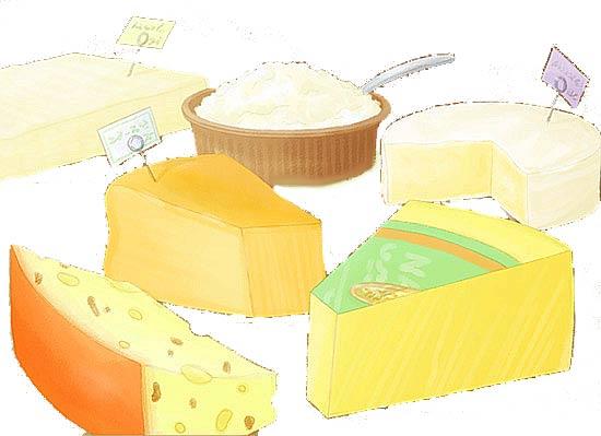 ナチュラルチーズ 種類絵jpg