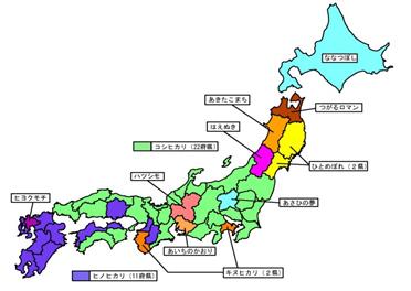 お米産地品種