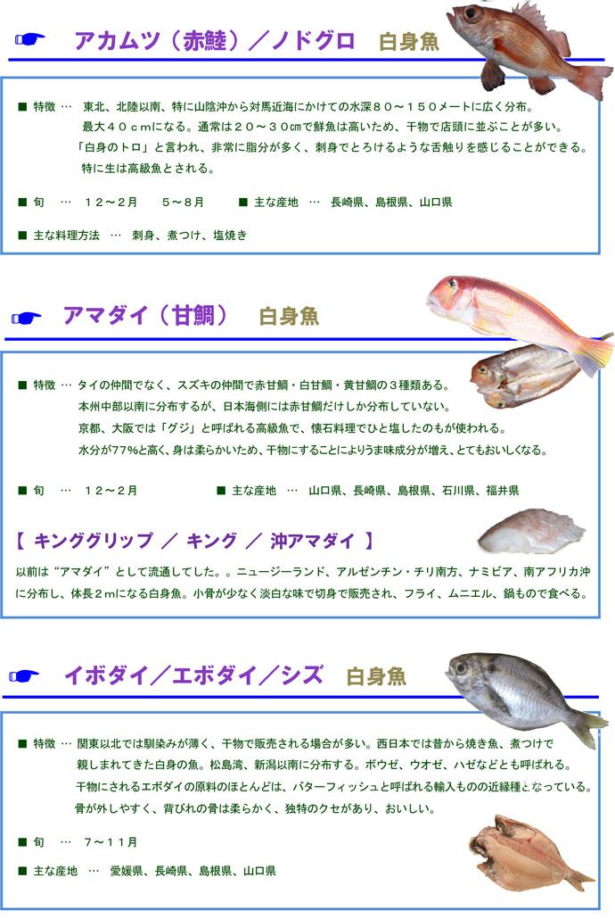 その他魚1