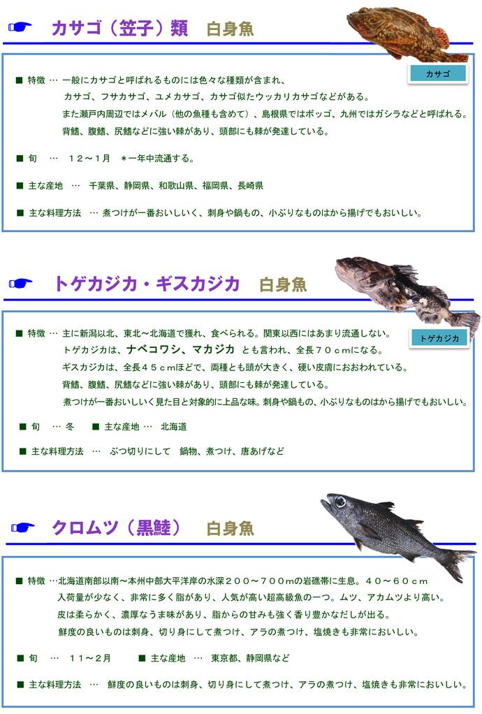 その他魚3