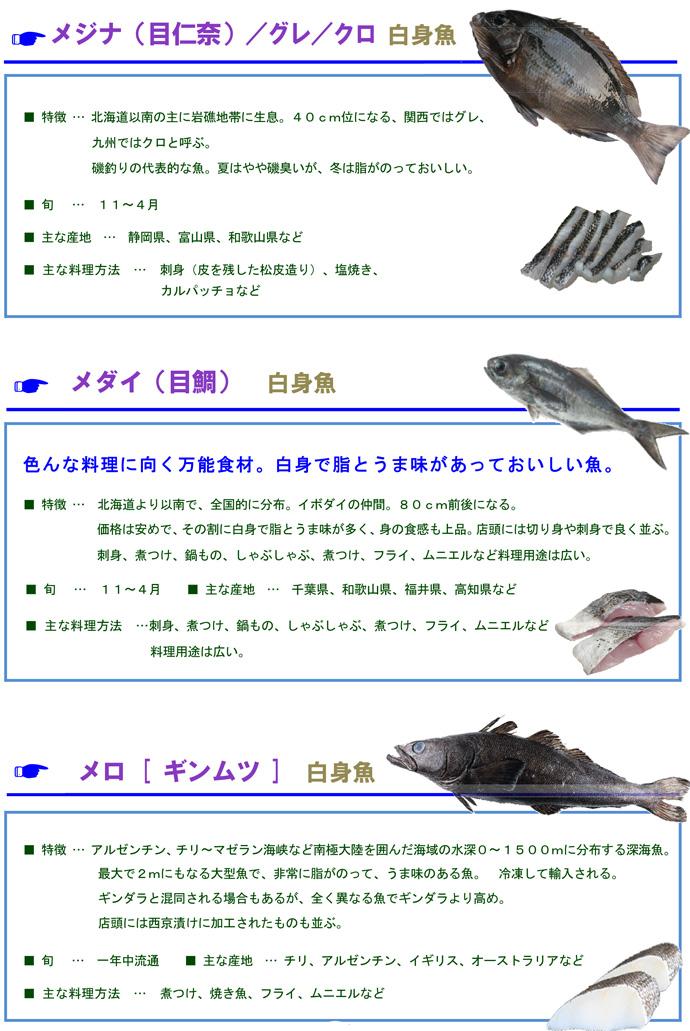 その他魚10