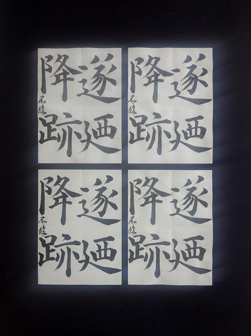20130905_rin_koushibyoudouhi_1.jpg