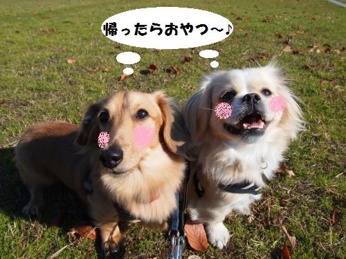 004_convert_20131203213002.jpg
