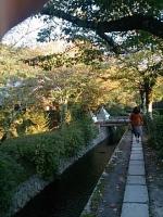 京都旅行201410250024