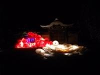 京都旅行201410250046