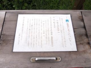 新潟ツアー (33)