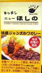 キッチン ニューほしの (1)