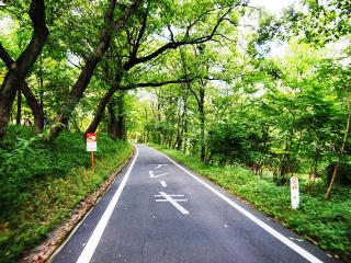 森林公園 (15)
