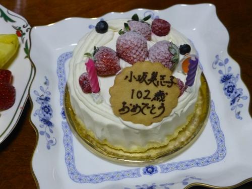 コピー (2) ~ P1000747
