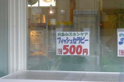 P1050187.jpg