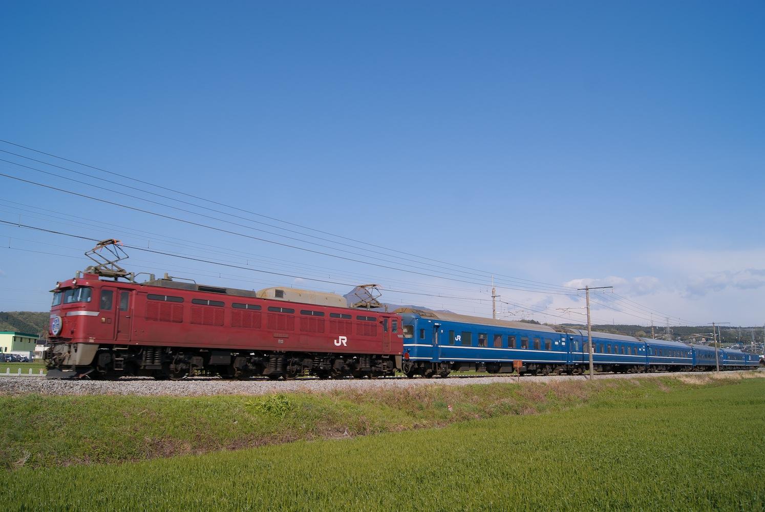 DSC03555-G-1 のコピー