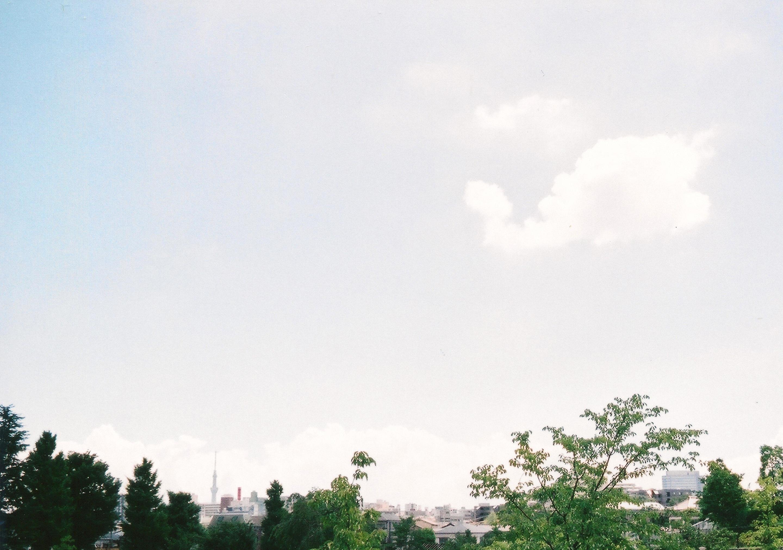20120819.jpeg