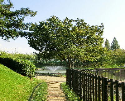 130919-白鷺公園-9