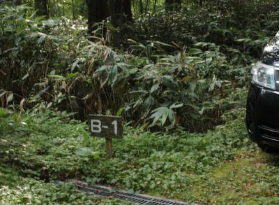 201308森きち10