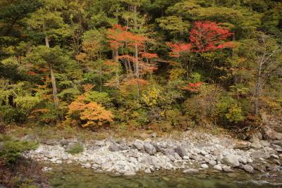 2013-10-19~20 おんたけ森きち 7