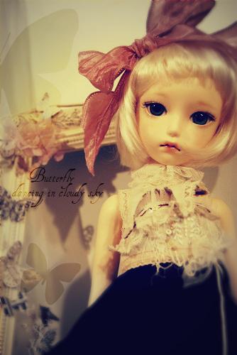 camellia5.jpg
