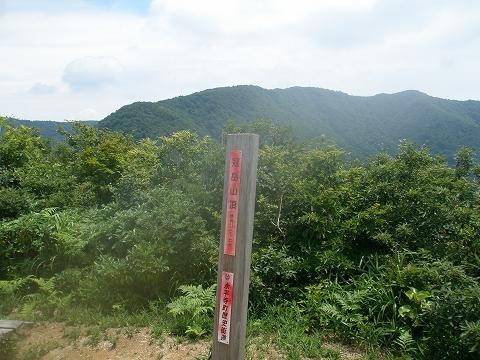 P7170007.jpg