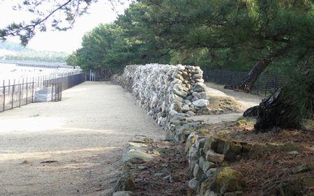 700年余前の合戦の現場