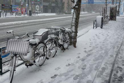 13年ぶりの大雪警報