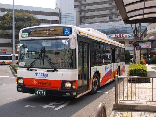 P3251648-1.jpg