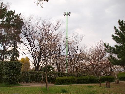P3251664-1.jpg