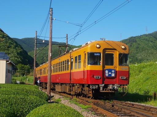 P5032137-1.jpg