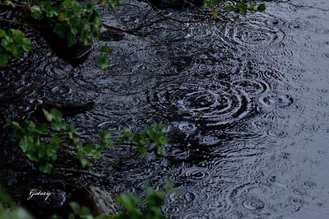 10月の雨