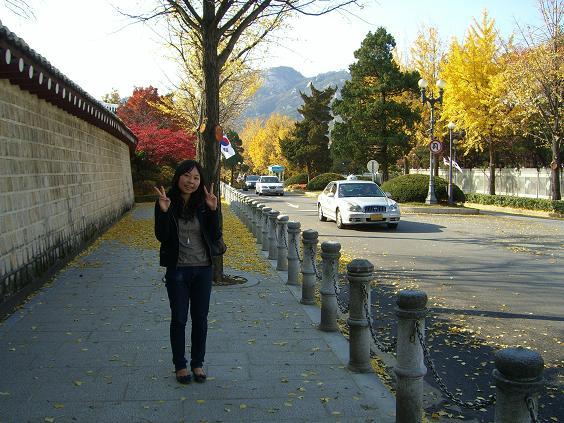 2008 in korea 右の家に大統領の住むところがぁ~!!!
