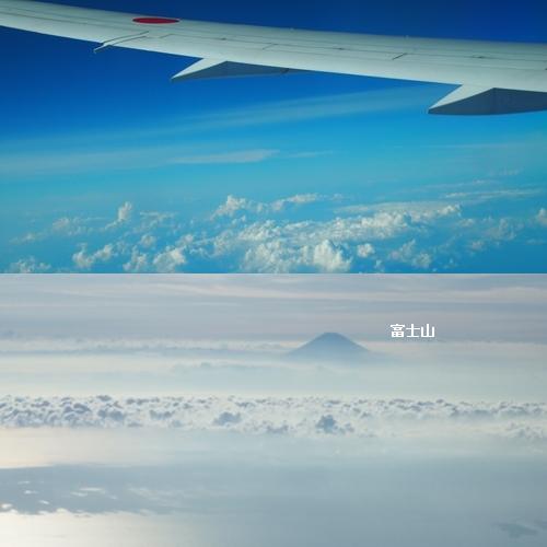 不耕起から富士山