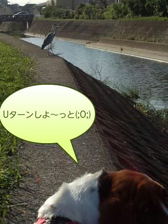 picsay-1379491581.jpg