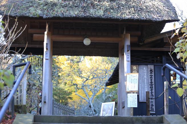 鎌倉紅葉と江ノ電+036_convert_20141210021555