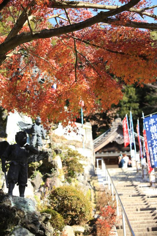 鎌倉紅葉と江ノ電+084_convert_20141210024323
