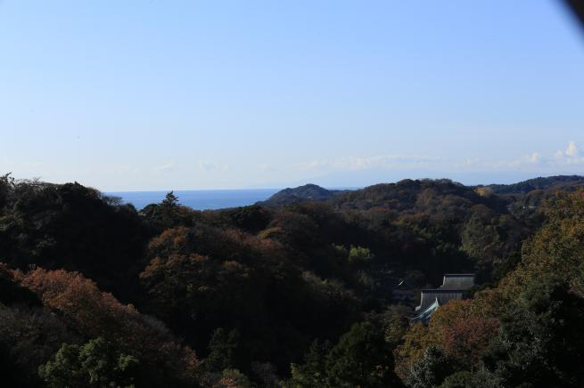 鎌倉紅葉と江ノ電+084_convert_20141210023955