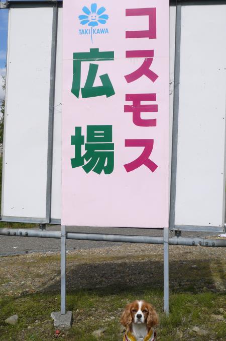 2013/9/30