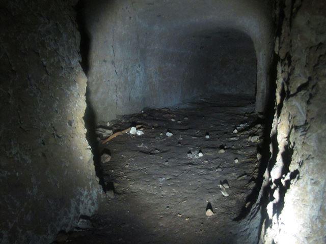 yama31 (2)