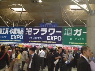 国際フラワーEXPO2013