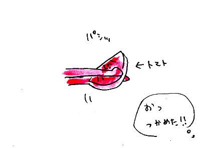 IMG_0008_20131023170319839.jpg